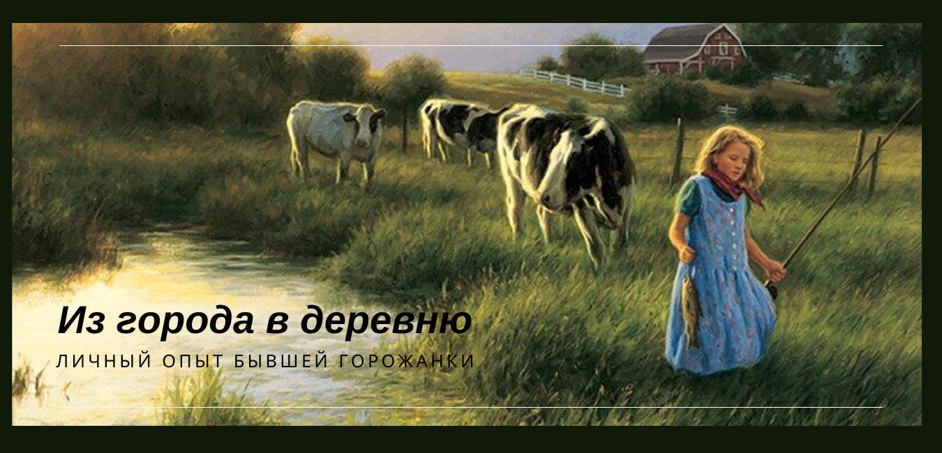 edem-v-derevnyu